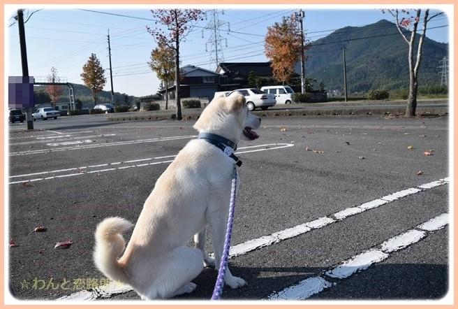 f:id:yasukazu01:20141111204550j:image