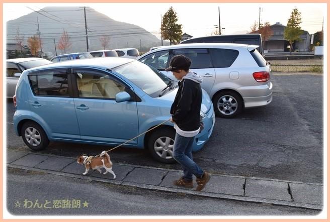 f:id:yasukazu01:20141114224451j:image