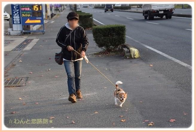 f:id:yasukazu01:20141114224645j:image