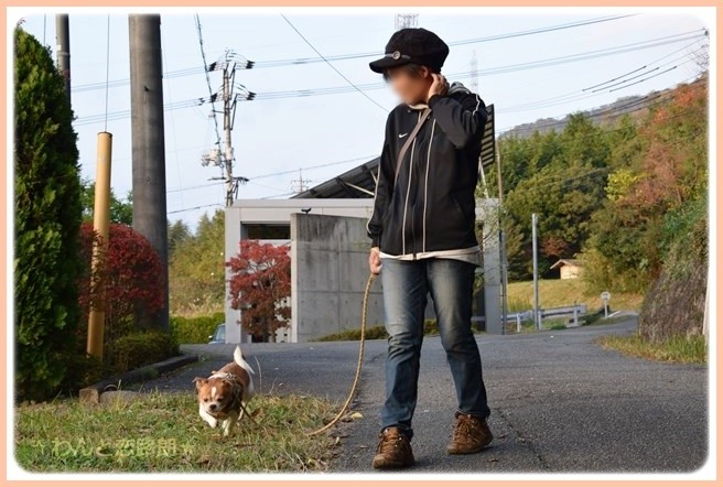 f:id:yasukazu01:20141114225817j:image