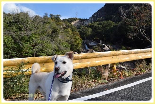 f:id:yasukazu01:20141115215908j:image