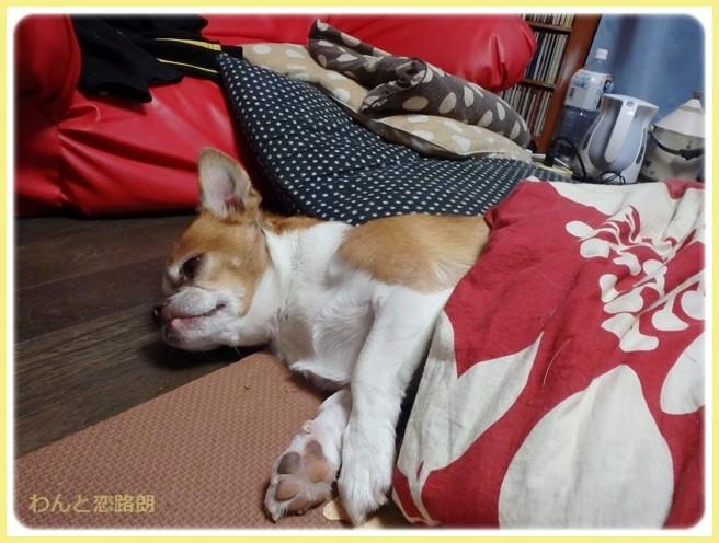 f:id:yasukazu01:20141119225013j:image