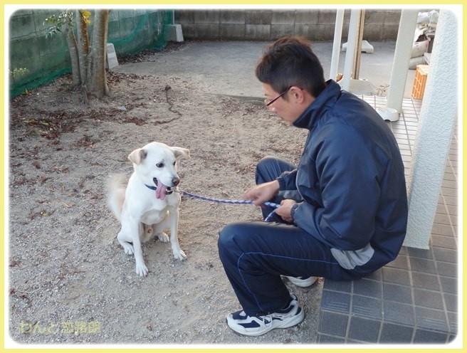 f:id:yasukazu01:20141119230951j:image