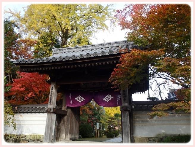 f:id:yasukazu01:20141120203012j:image