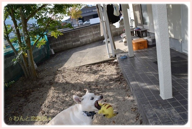 f:id:yasukazu01:20141122081951j:image