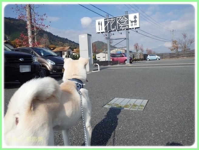 f:id:yasukazu01:20141124212502j:image