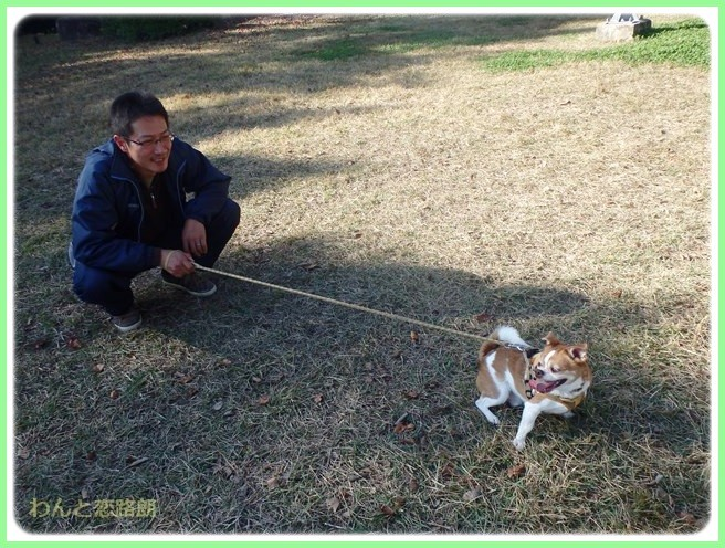 f:id:yasukazu01:20141124215215j:image