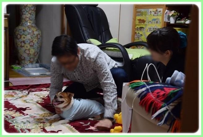 f:id:yasukazu01:20141125205724j:image