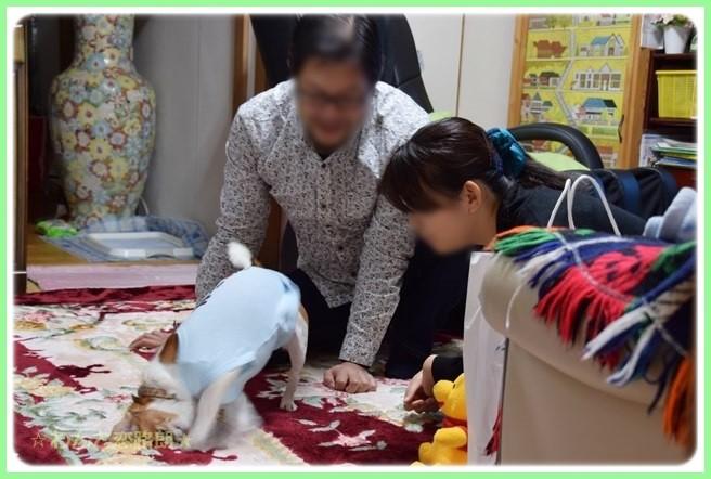 f:id:yasukazu01:20141125205812j:image