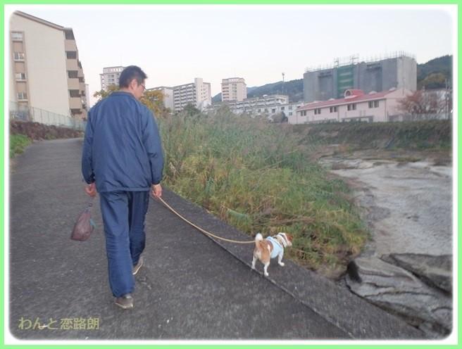 f:id:yasukazu01:20141125210924j:image
