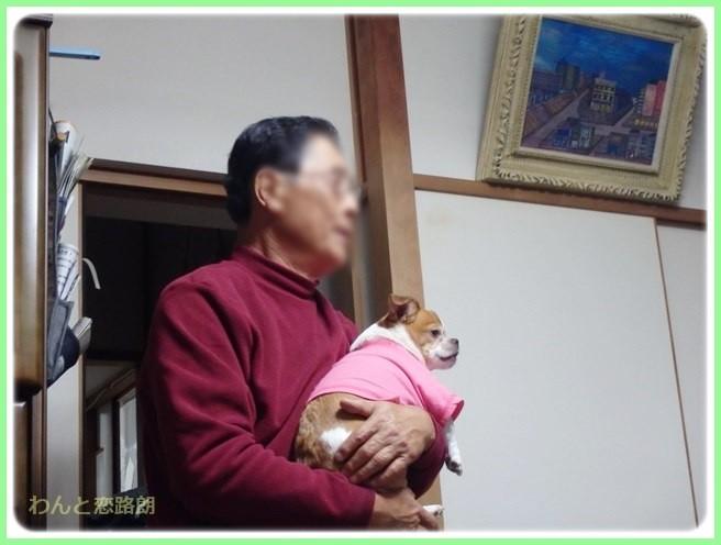 f:id:yasukazu01:20141126195813j:image