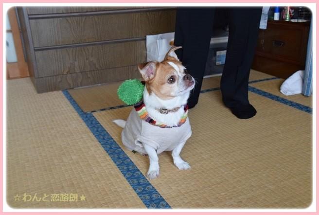 f:id:yasukazu01:20141127222341j:image