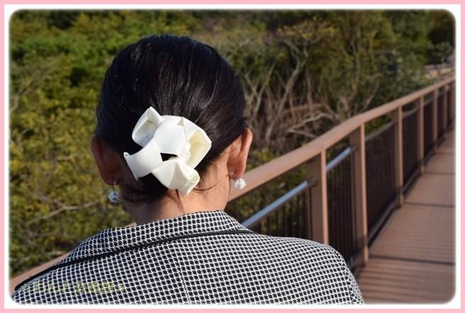 f:id:yasukazu01:20141127222913j:image