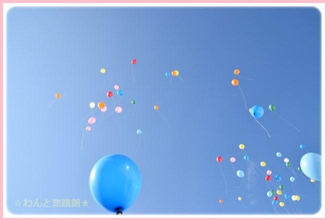 f:id:yasukazu01:20141129201540j:image