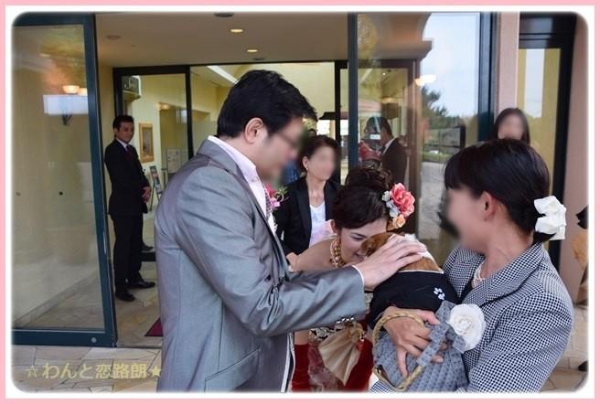 f:id:yasukazu01:20141208121303j:image
