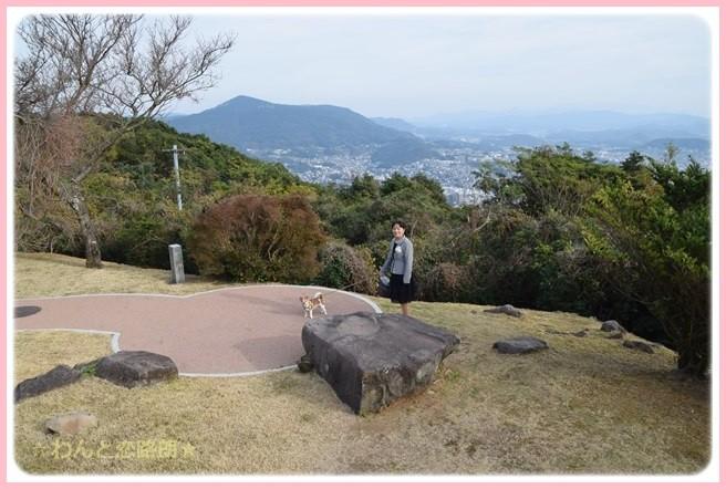 f:id:yasukazu01:20141208205955j:image