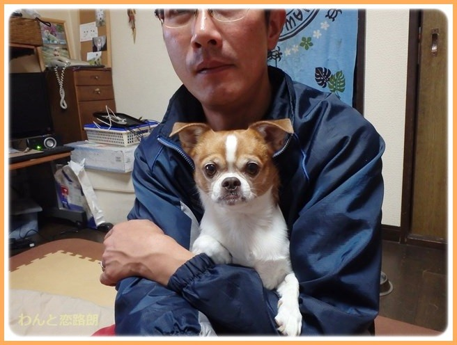 f:id:yasukazu01:20141219212748j:image