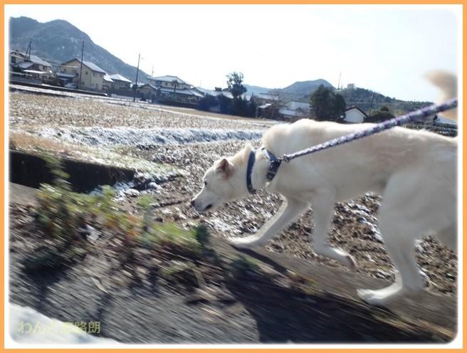 f:id:yasukazu01:20141222204153j:image