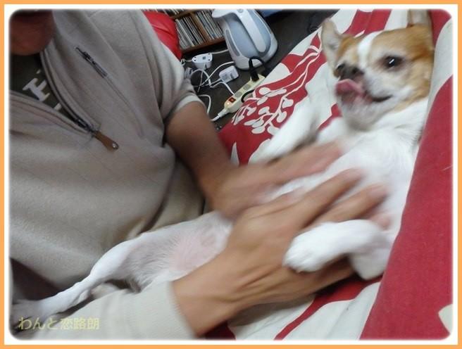 f:id:yasukazu01:20141222205408j:image