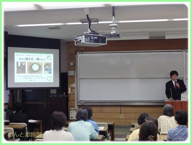 f:id:yasukazu01:20141227214603j:image