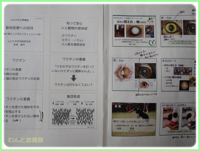 f:id:yasukazu01:20141227214911j:image