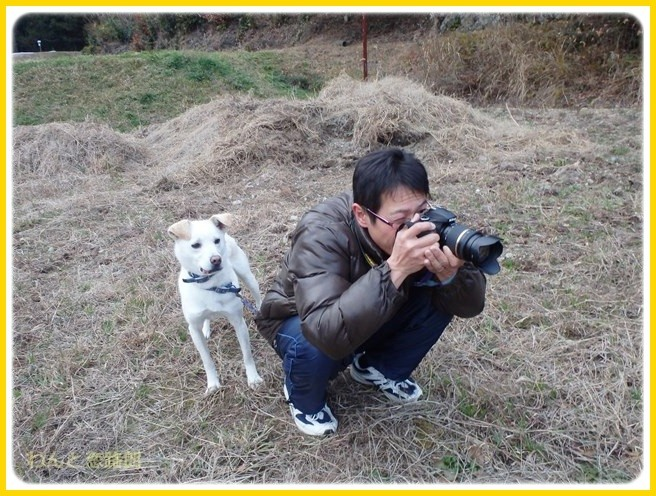 f:id:yasukazu01:20150105200228j:image