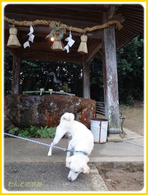 f:id:yasukazu01:20150105203722j:image