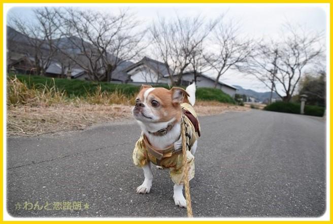 f:id:yasukazu01:20150108230627j:image