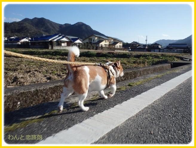 f:id:yasukazu01:20150109212010j:image