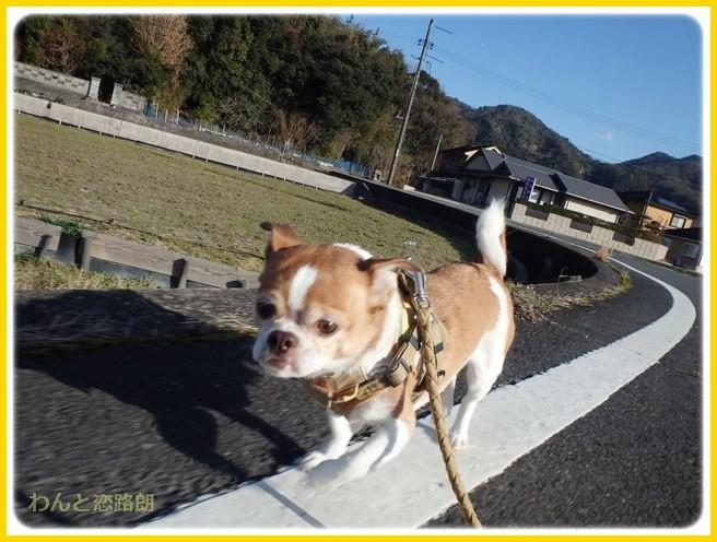 f:id:yasukazu01:20150109212904j:image