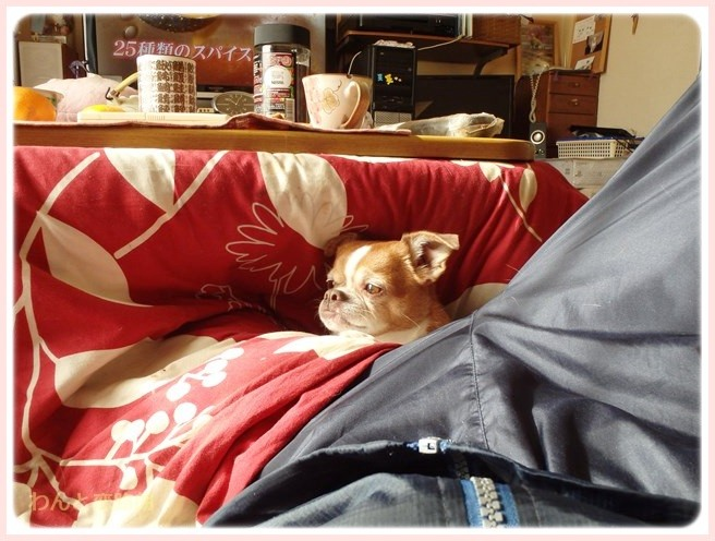f:id:yasukazu01:20150112201821j:image