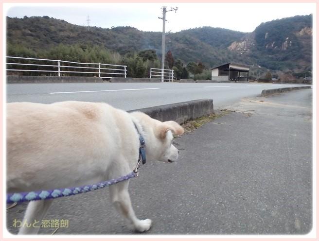 f:id:yasukazu01:20150112202309j:image