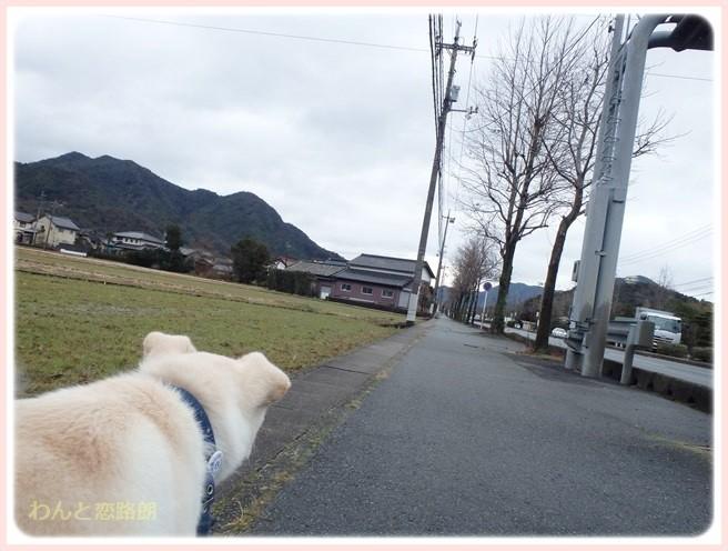 f:id:yasukazu01:20150115210605j:image
