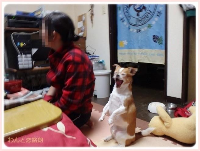 f:id:yasukazu01:20150116231206j:image