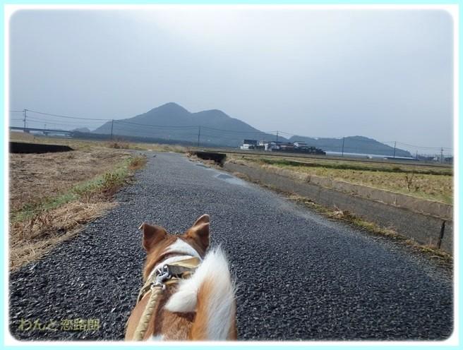 f:id:yasukazu01:20150117211751j:image