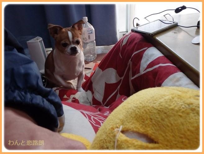 f:id:yasukazu01:20150120210716j:image