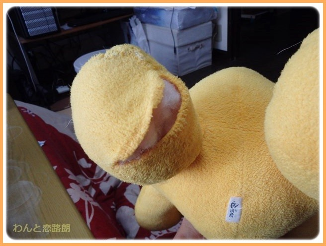 f:id:yasukazu01:20150120210843j:image
