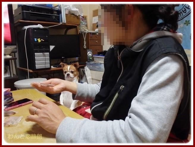 f:id:yasukazu01:20150122200841j:image