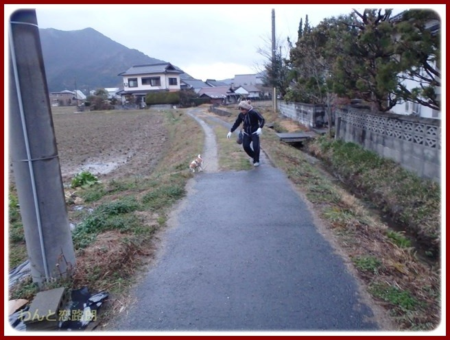 f:id:yasukazu01:20150122203706j:image