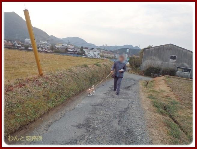 f:id:yasukazu01:20150125204625j:image