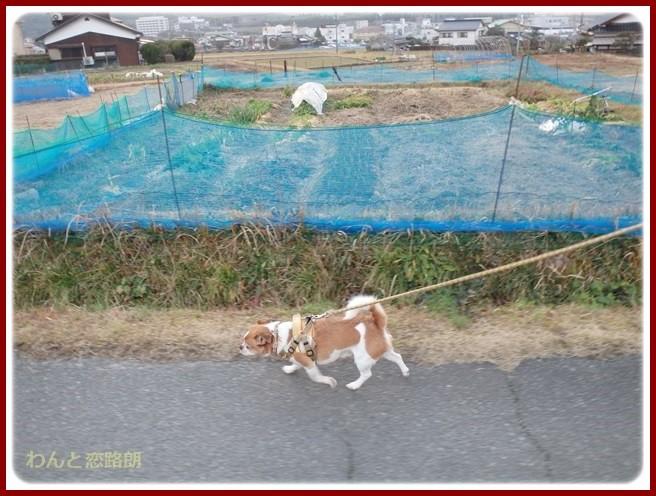 f:id:yasukazu01:20150125204955j:image