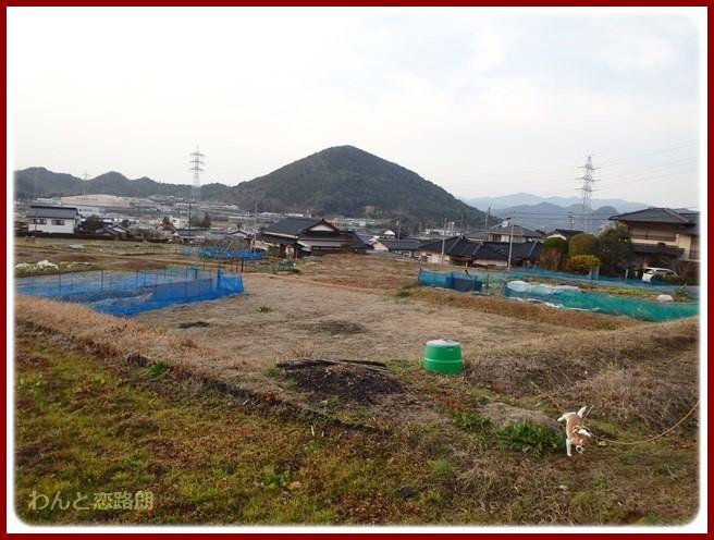 f:id:yasukazu01:20150125205300j:image