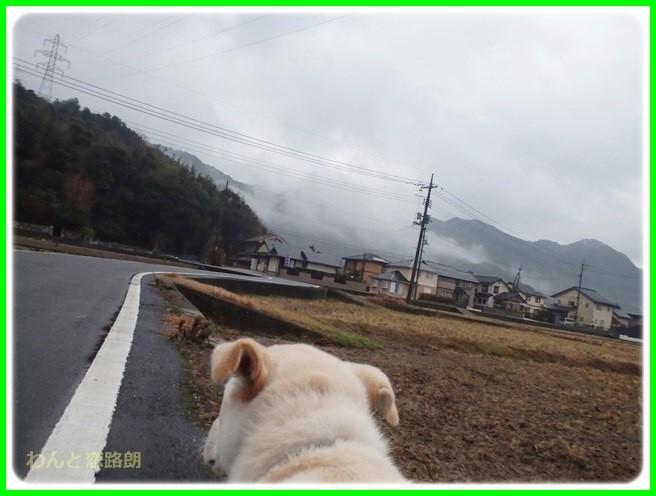 f:id:yasukazu01:20150126203033j:image