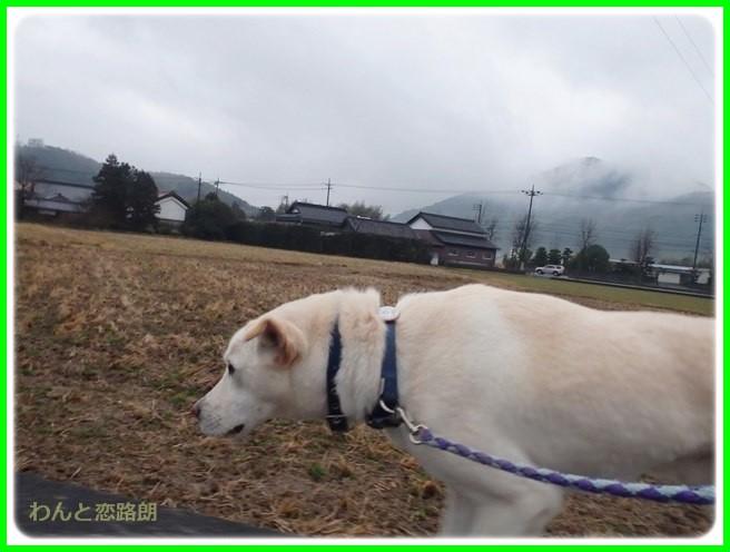 f:id:yasukazu01:20150126203201j:image