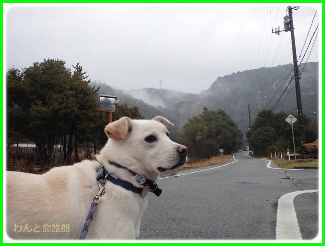 f:id:yasukazu01:20150126203932j:image