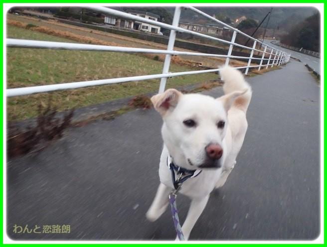 f:id:yasukazu01:20150126204421j:image