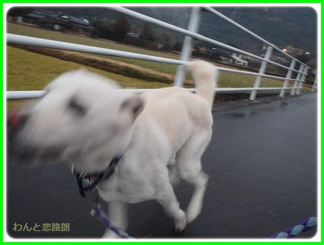 f:id:yasukazu01:20150126205043j:image