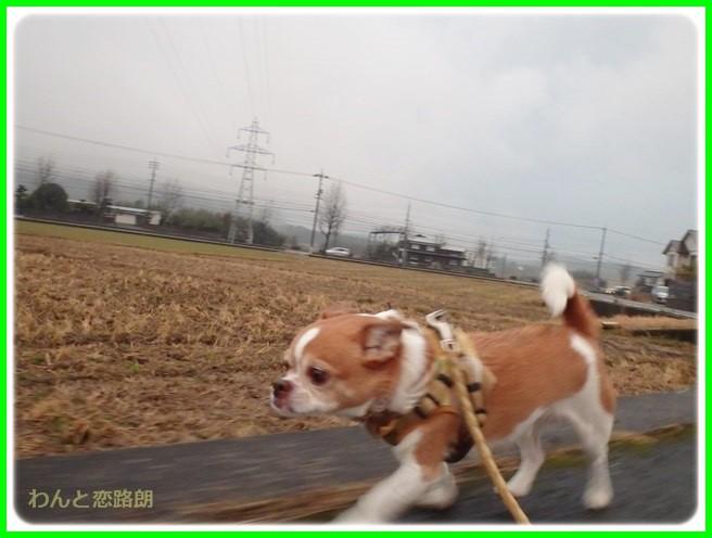 f:id:yasukazu01:20150126205303j:image