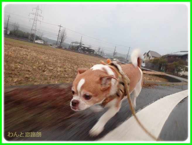 f:id:yasukazu01:20150126205332j:image