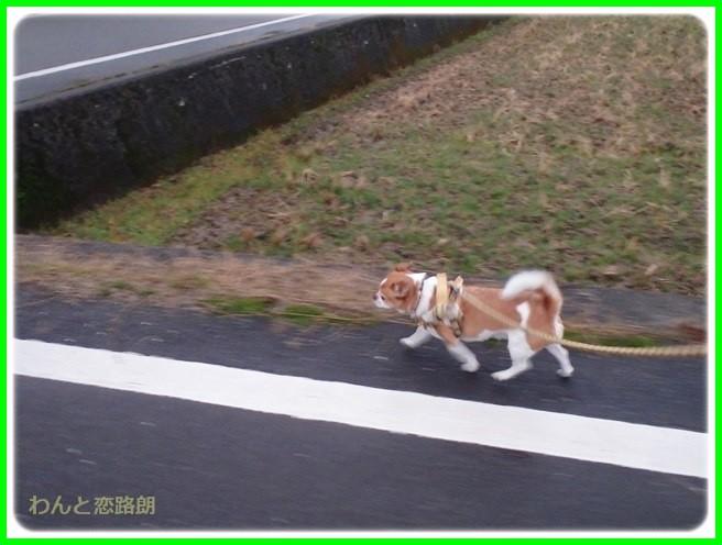 f:id:yasukazu01:20150126205435j:image